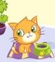 Kitty Slacking